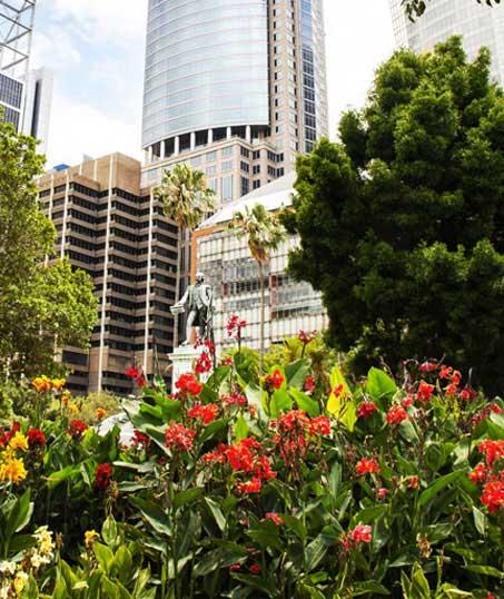 Ubiquitous Landscape Solutions Landscaping Company