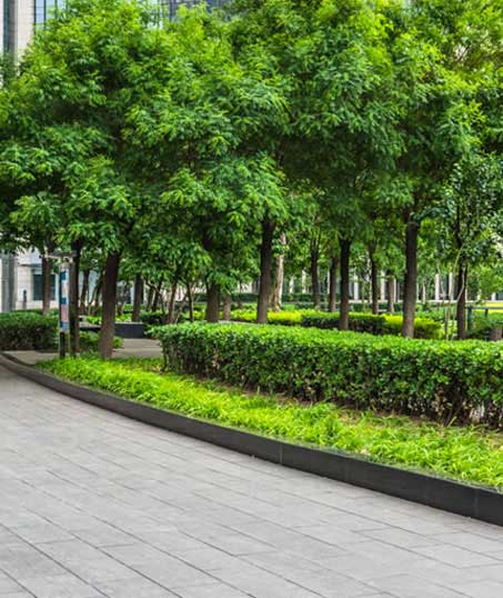 Ubiquitous Landscape Solutions Commercial Grounds Maintenance