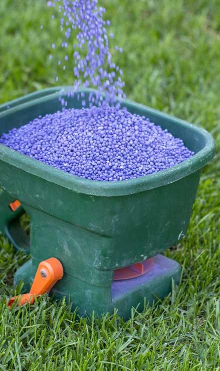 Ubiquitous Landscape Solutions  Lawn Fertilization