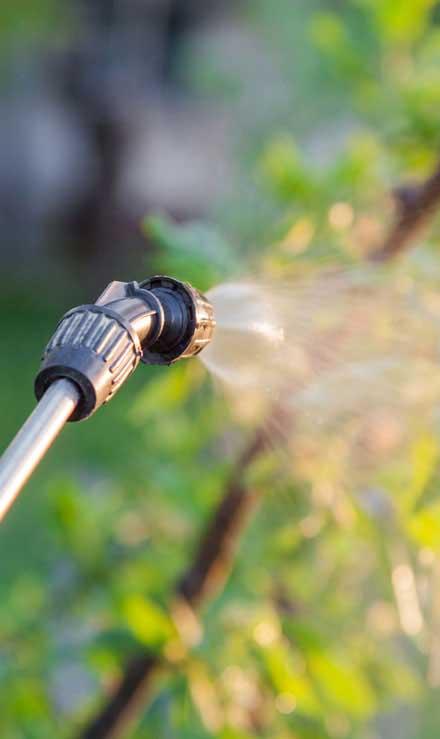Ubiquitous Landscape Solutions Lawn Pest Control