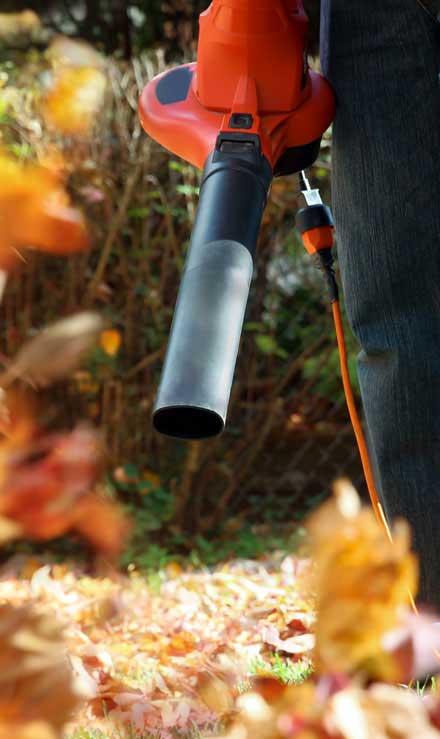 Ubiquitous Landscape Solutions Leaf Removal
