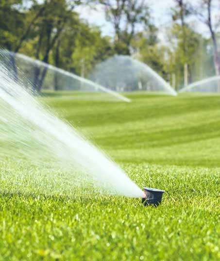 Ubiquitous Landscape Solutions Sprinkler Installation