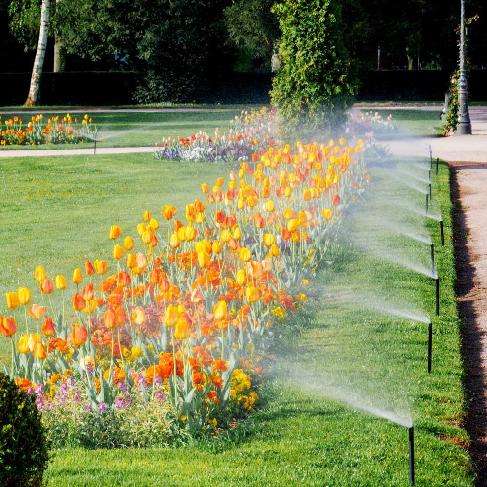 Sprinkler Blowout Service