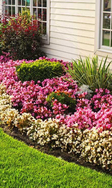 Ubiquitous Landscape Solutions Garden Design