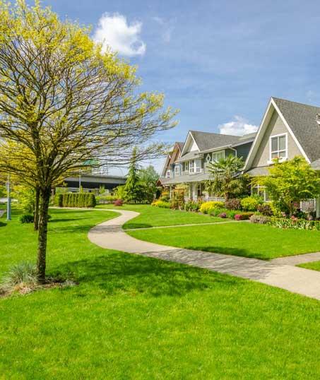 Ubiquitous Landscape Solutions Residential Lawn Care